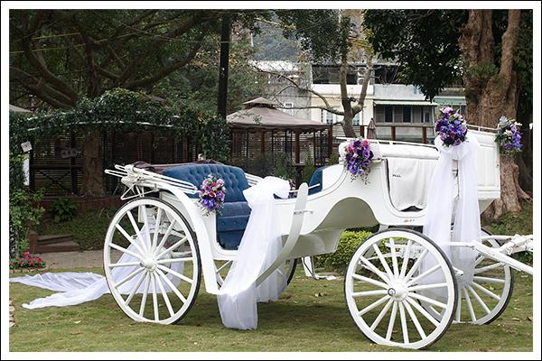 戶外婚禮, 婚禮, 婚宴, 主題婚禮, 地雷, 青青風車莊園