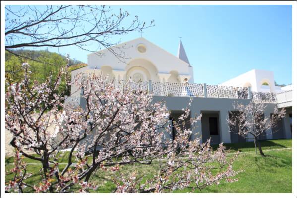 婚禮代辦, 教堂婚禮, 日本, 海外婚禮, 北海道